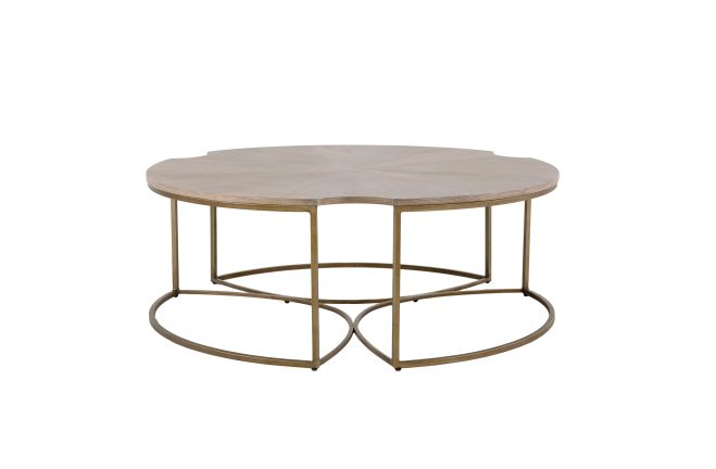 Cerused Oak Coffee Table | Zelda Coffee Table | Gabby